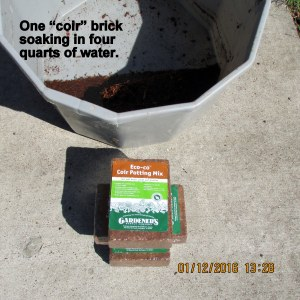 One brick soaking