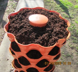 Full to the top and cap on compost tube