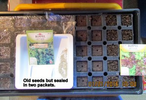 Old seed but double package
