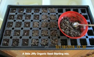 Covering the seeds