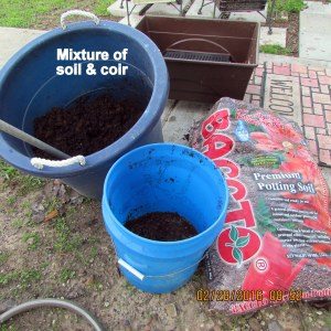 Mixture of soil and coir