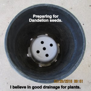 Holes drilled in planter