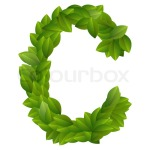 Letter C with green leaves
