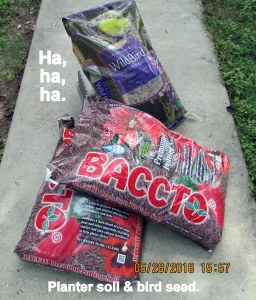 Bird seed and planter soil