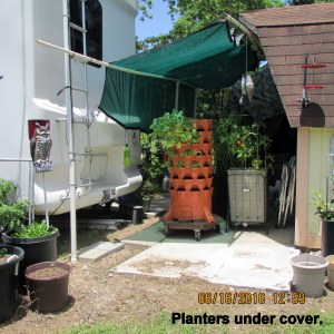 Under shade, picture from yard