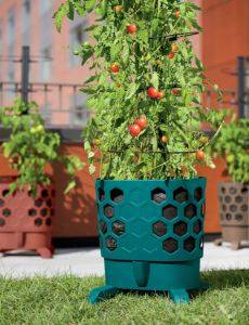 Gardeners-revolution-tomato-planter