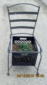 Planter on a chair (1)